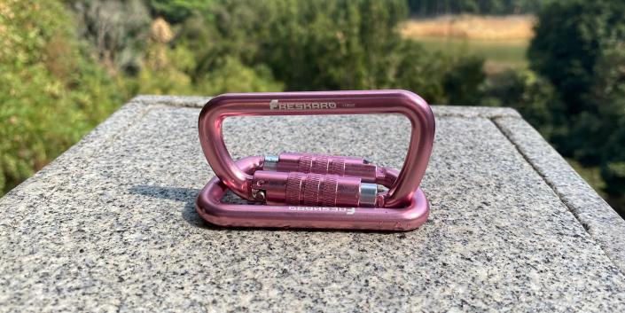 12kN Screw Lock Carabiner Pink 2pack