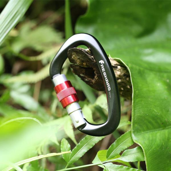 25kN Screw-locking Carabiner